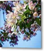 Springtime In Bloom Metal Print