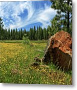 Springtime In Lassen County Metal Print