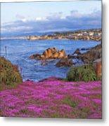 Springtime In Pacific Grove Metal Print
