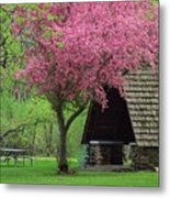Springtime In The Park Metal Print by Lori Frisch