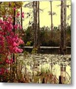 Springtime In The Swamp Metal Print