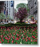 Springtime On Park Avenue Metal Print