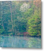 Springtime Reflection Metal Print
