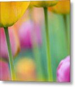 Springtime Metal Print by Silke Magino