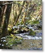 Springtime Stream In The Smokies Metal Print