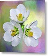 Springtime Triplets By Kaye Menner Metal Print