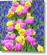 Springtime Tulips 01 Painterly Effecy Metal Print