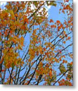 Sprinkles Of Autumn Metal Print
