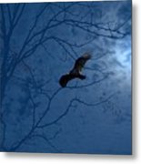Sprit In The Sky Metal Print