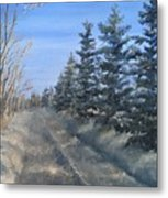 Spruce Trees Along A Snowy Road  Metal Print