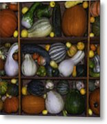 Squash And Gourds In Compartments Metal Print