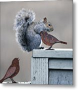 Squirrely Metal Print