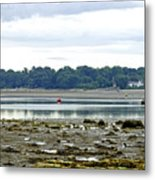 St Helens Beach To Bembridge Point Metal Print