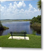 St Johns River In Florida Metal Print