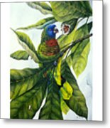 St. Lucia Parrot And Fruit Metal Print