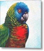 St. Lucia Parrot Metal Print