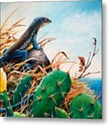 St. Lucia Whiptail Metal Print