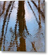 St. Vrains Creek Reflection Metal Print