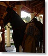Stable Groom - 2 Metal Print