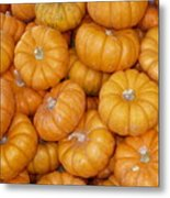 Stacked Mini Pumpkins Metal Print
