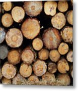 Stacked Timber Two Metal Print