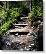 Stair Stone Walkway In The Forest Metal Print