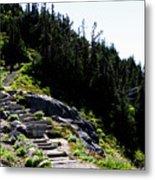 Stairs Along Skyline Trail Metal Print