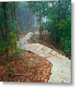 Stairs Down Mountain Metal Print