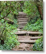 Stairs Going Up Hillside Metal Print