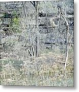 Stairs On The Wall Metal Print