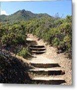 Stairway To Heaven On Mt Tamalpais Metal Print