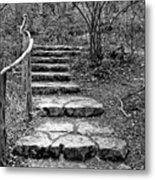 Stairway To Nature Metal Print