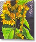 Stalk Of Sunflowers Metal Print
