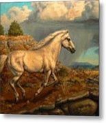 Stallion's Overlook Metal Print