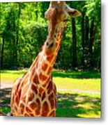 Standing Above The Rest Metal Print