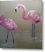 Standing Flamingos Metal Print