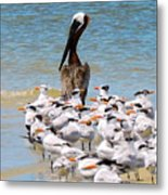 Standing On Point Metal Print