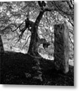 Standing Stones Near The Tree Metal Print