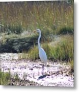 Standing There Metal Print