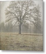 Stands Alone Metal Print
