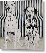 Stanley And Stelle Metal Print
