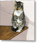 Stanzie Cat Metal Print