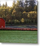 Star Barn Metal Print