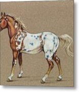 Star Spangled Horse Metal Print