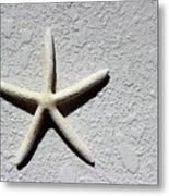 Starfish 2016 Metal Print