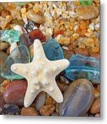 Starfish Art Prints Star Fish Seaglass Sea Glass Metal Print