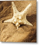 Starfish In Sand Metal Print
