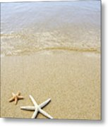 Starfish On Beach Metal Print