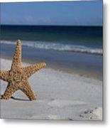 Starfish Standing On The Beach Metal Print