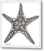 Starfish Metal Print by Stephanie Troxell